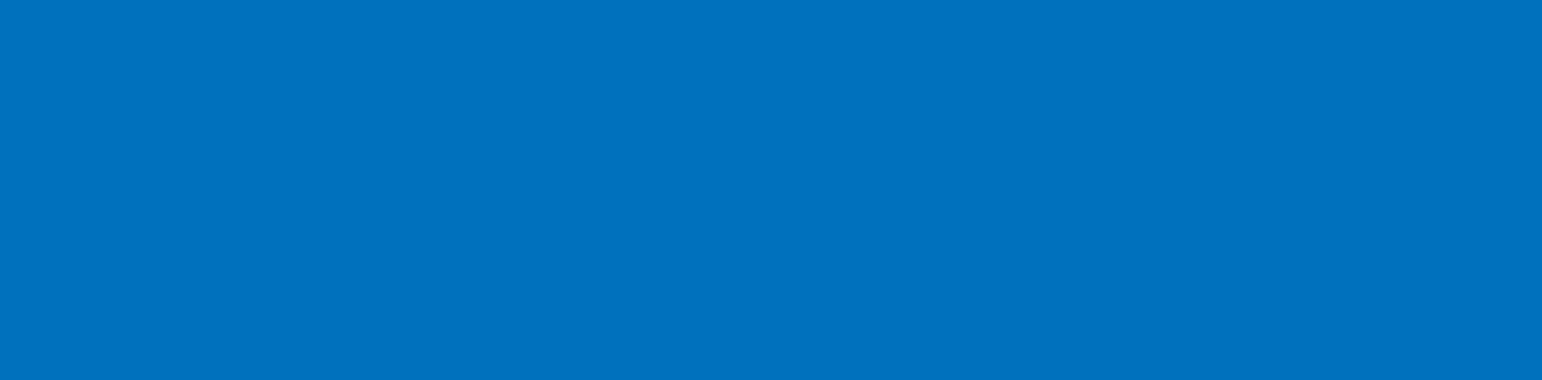 Brain Mind Wellness Logo